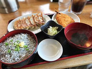 シラスと餃子定食_201708.JPG